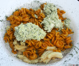 Walnusspesto on Pasta Box