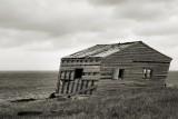 DSC09116 - Eddie's Cove Shack