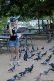 August 21st, 2006 - The Birds 1483