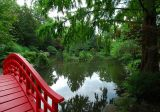 Oriental Garden
