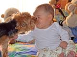 My dog Kooza kissing my grandson Jose Pablo