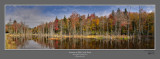 Autumn Hills Creek Pond.jpg
