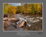 Williams River Autumn 1.jpg