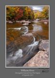 Williams River Autumn 5b Crop.jpg