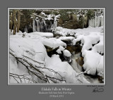 Elakala Winter 1.jpg