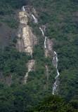 jungle falls.jpg
