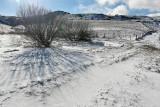 Auvergne - Région de Besse - Randonnées hivernales en janvier 2013