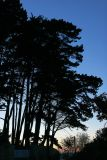 Douarnenez 2006 - Balade sur la côte en fin de journée