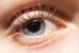 Talis Eye 0223.jpg
