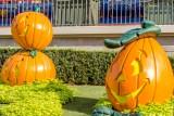 006 Disney Halloween.jpg
