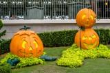 056 Disney Halloween.jpg