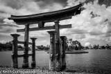 Japan  003.jpg