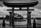 Japan  011.jpg