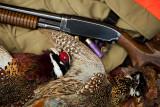 Winchester Model 12 16 Gauge