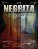 NEGRITA UNPLUGGED 2013 - Senigallia 16/03/2013