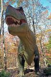 T-Rex, at the North Carolina Zoo