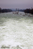 River Drava IMG_6518.jpg