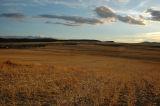 Crop lands