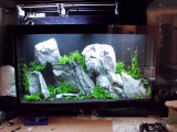 2.000 Liter Aquascape by Oliver Knott