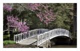 Arboretum, Belle Plaine, KS