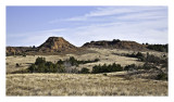 Prairie,  West of Medicine Lodge