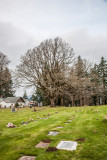 Cascade Locks Cemetery With Jim, Nov 27 2012