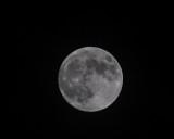 Moon Shoot Challenge, Nov 27 2012