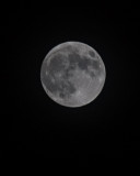 Full Moon Shots, Nov 27 2012