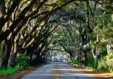 Magnolia Ave.