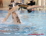 Synchronized Swimming 08613 copy.jpg