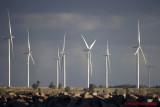 Wind Turbines 02489 copy.jpg