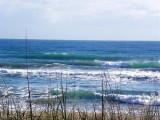 19 Feb 2013 Paradise