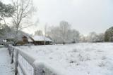 xt ranch in snow copy.jpg