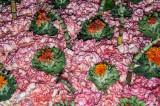 lots_of_flowers