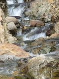IMG_0330Cascading creek.JPG