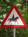 Uwaga na konie!(IMG_3879.JPG)