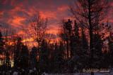 Nov 11 sunrise