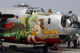B-24 Dragon and his Tail