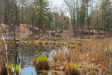 Topsfield. Ipswich River Wildlife Sanctuary