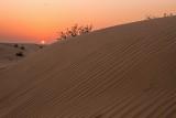 Red sky in the desert