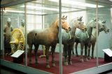 Museum of Qin Terra Cotta Warriors and Horses