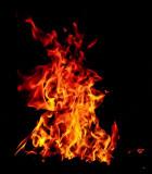 Flame _MG_7448.jpg
