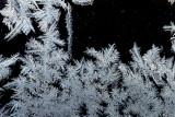 Frozen water  _MG_5368.jpg