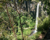 Album 12: Springbrook: Lookouts and a Natural Arch