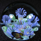 Paradise Aquarium Size: 1.47 Price: SOLD