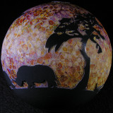 White Rhino Sunset Size: 3.28 Price: SOLD