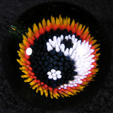 Yin-Yang Explosion  size: 1.54  Price: SOLD