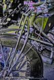 Antique Bike, Lavender Glow