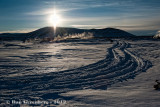 Tracks Through Fresh Snow
