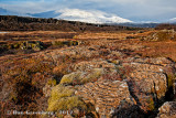 Þingvellir - Thingvellir National Park